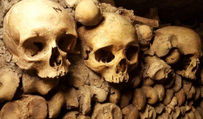 Le cabinet de réflexion ou la caverne alchimique
