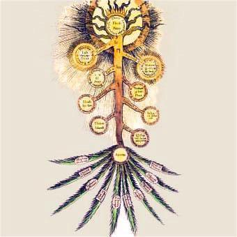 Les Parzufim EzoOccult - Les Trente deux Sentiers de la Sagesse