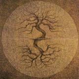 Alphabet magique du Transitus Fluvii EzoOccult image 4