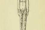 Deux figures baphométiques EzoOccult image 6