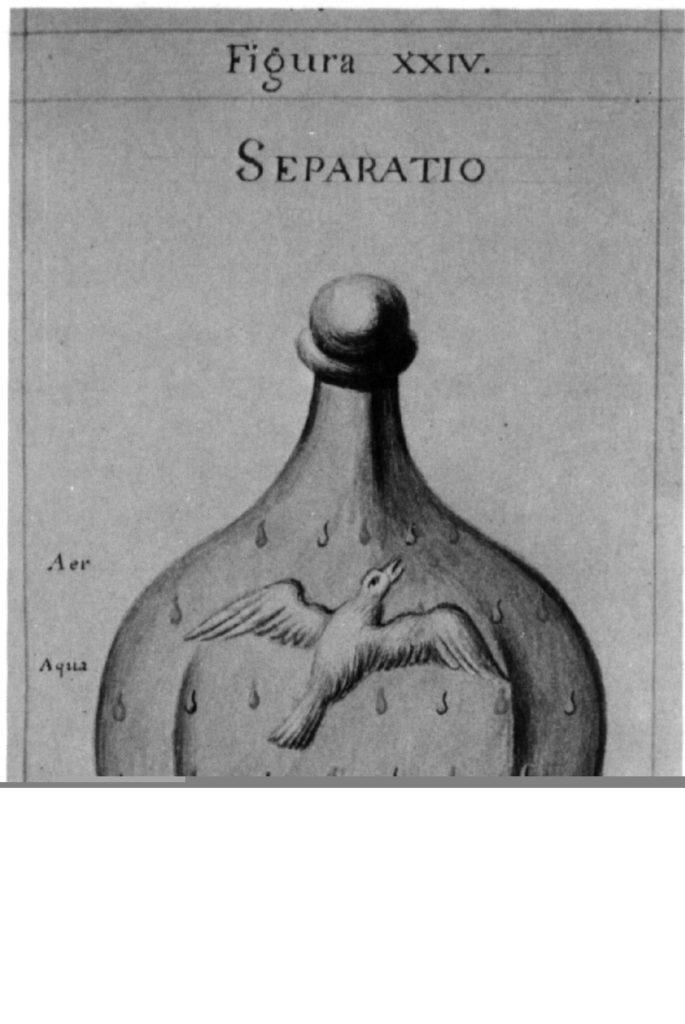 Sapientia Veterum Philosophorum 23